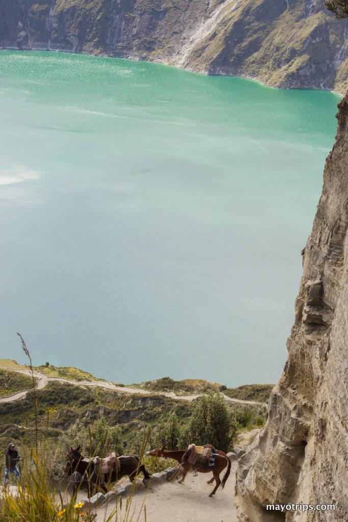 Primeira parte das imagens que eu fiz no Equador. Quilotoa Lake, Amazonia, Quito, Natureza, Zoo em Puyo - Pastaza e Retratos