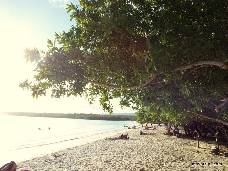 tortuga bay beach sand